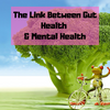 How To Improve Gut Health - The Link Between A Healthy Gut & Mental Health