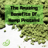 Hemp Protein Benefits And Health Considerations