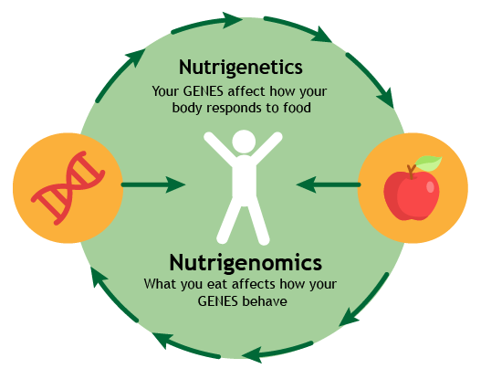 what is nutrigenomics