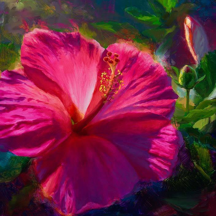 Hibiscus flower meaning and symbolism