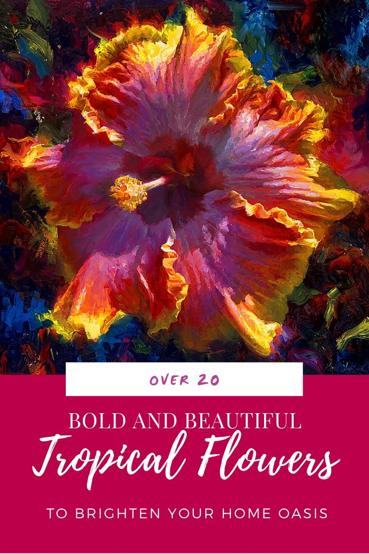 Graphic with tropical Hawaiian Hibiscus flower painting and the words: Over 20 Tropical Flowers to brighten your home oasis""