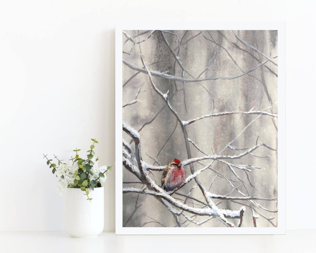 """Eyeing The Feeder 1"" - Winter Songbird Art Print"