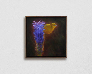 Framed Painting on Canvas of Hawaiian Amakihi Bird on a Haleakala Lobelia Flower on white wall by Hawaii Gallery Artist Karen Whitworth