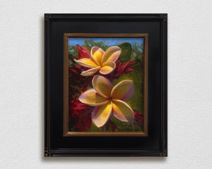 Framed wall art canvas of tropical Hawaiian Plumeria flowers by gallery artist Karen Whitworth on white wall