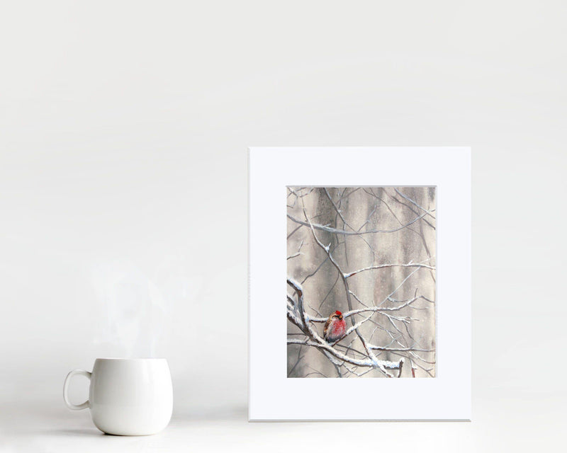 Soothing wall art print of a single songbird in a winter forest painting by wildlife artist Karen Whitworth