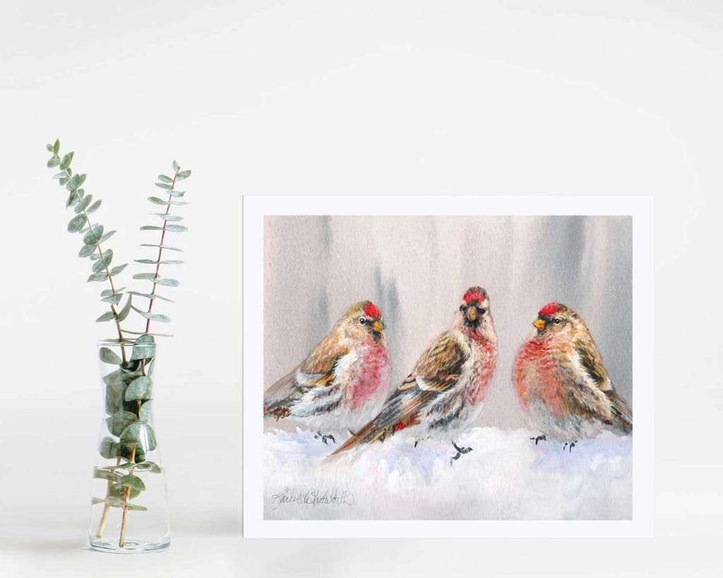 Wall art print of redpoll songbirds by wildlife artist Karen Whitworth