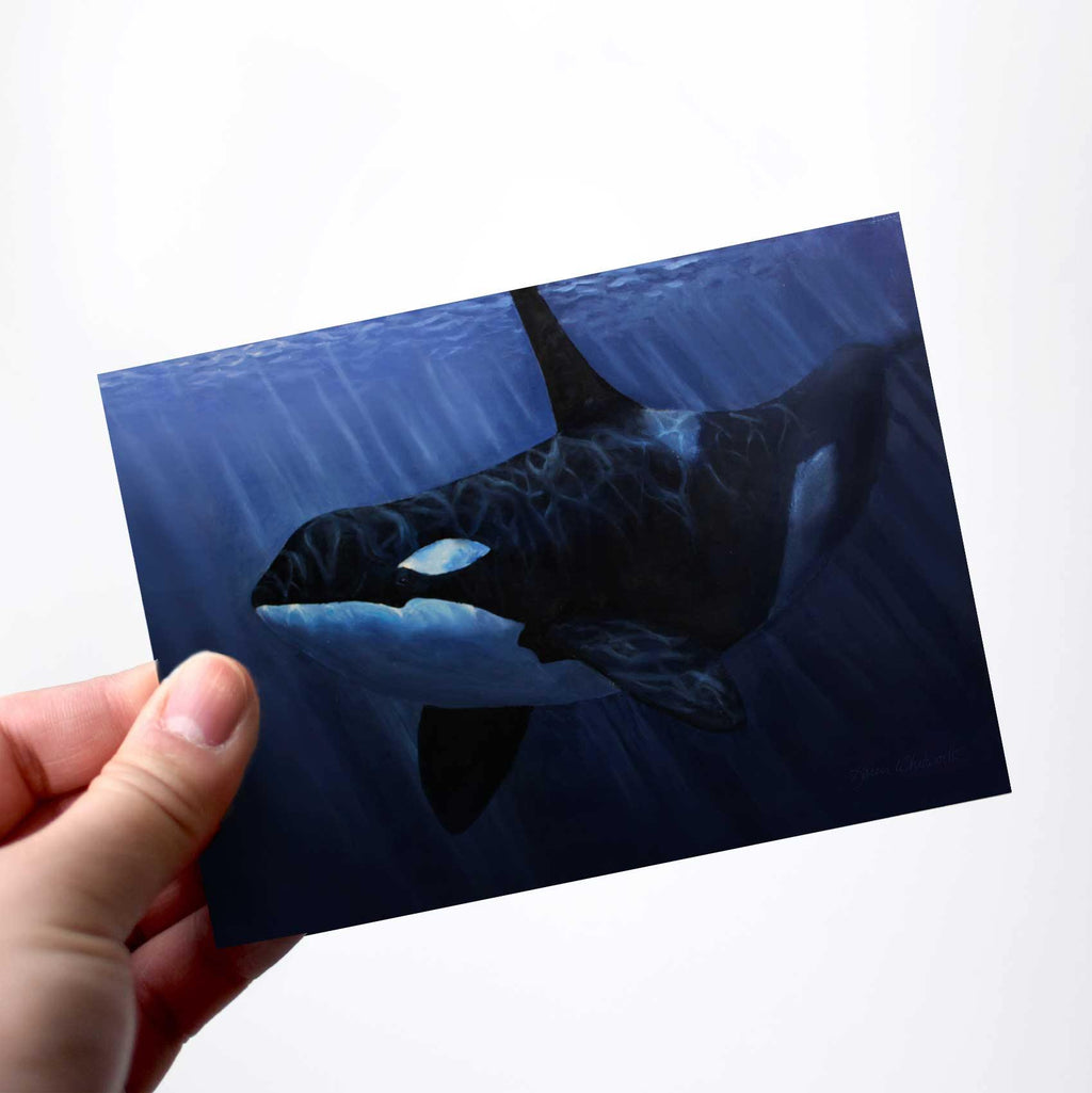 Orca Killer Whale in the blue ocean greeting card by Alaska artist Karen Whitworth.