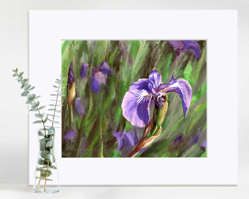 Paper wall art print of Alaskan wild iris flower by artist Karen Whitworth