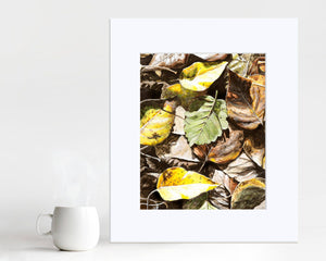 Wall art print of fallen leaves by nature artist Karen Whitworth