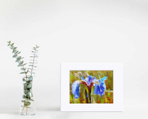 Painting of wildflowers and butterfly wall art print by floral artist Karen Whitworth