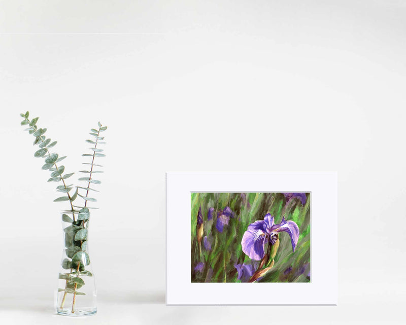 "5x7"" Matted Paper wall art print of Alaskan wild iris flower by artist Karen Whitworth"