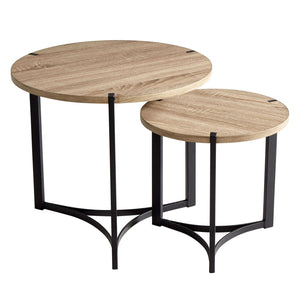Cyan Design Tri Nesting Side Table Set of 2