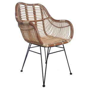 Quimby Rattan Armchair