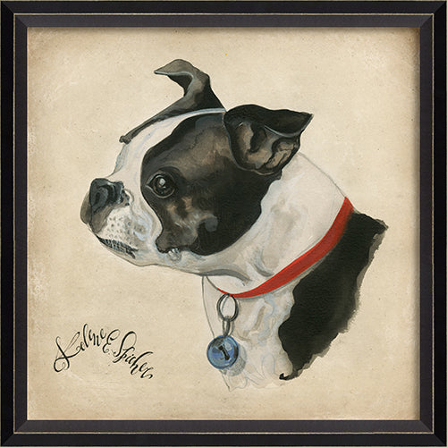 Dog Portrait Buster Framed Print