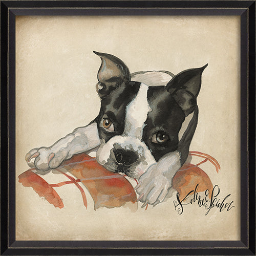 Dog Portrait Max Framed Print