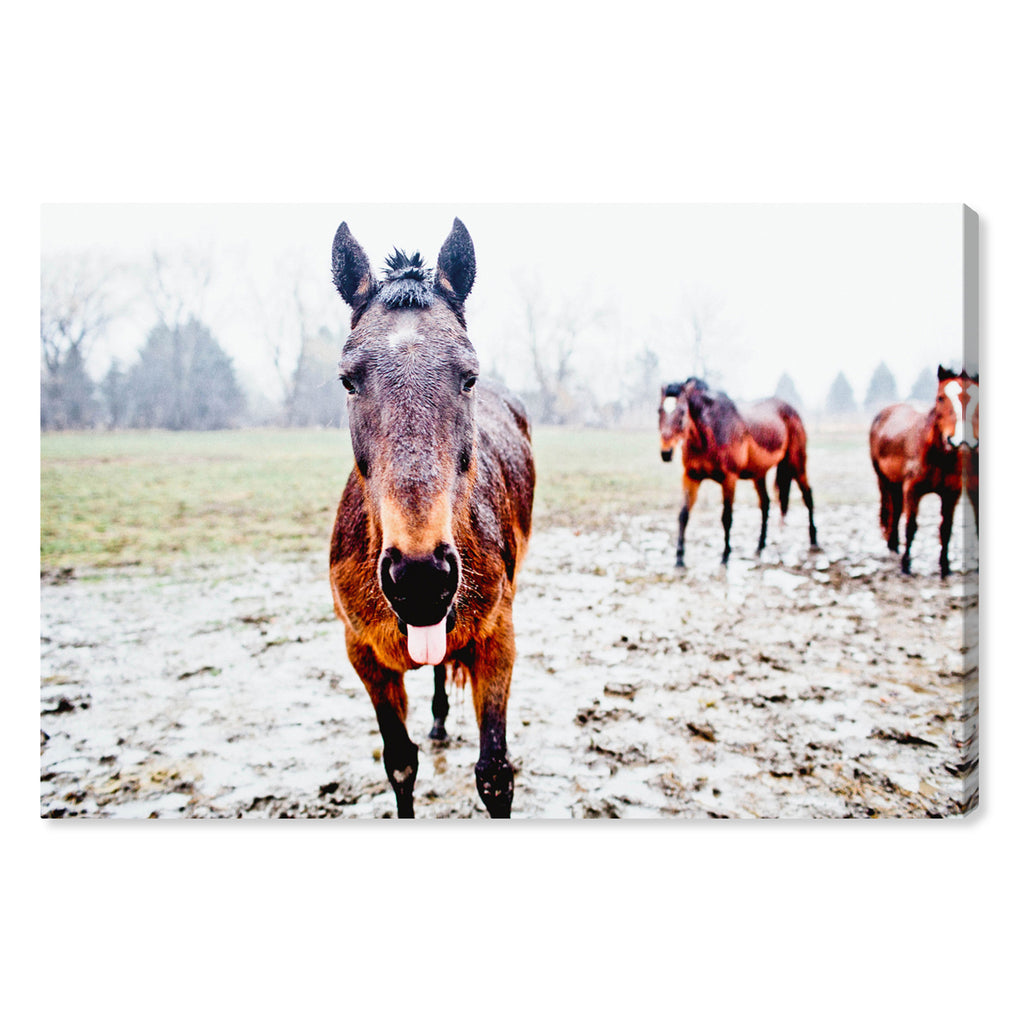 Oliver Gal Cassandra Eldridge Josephina The Horse Canvas Wall Art