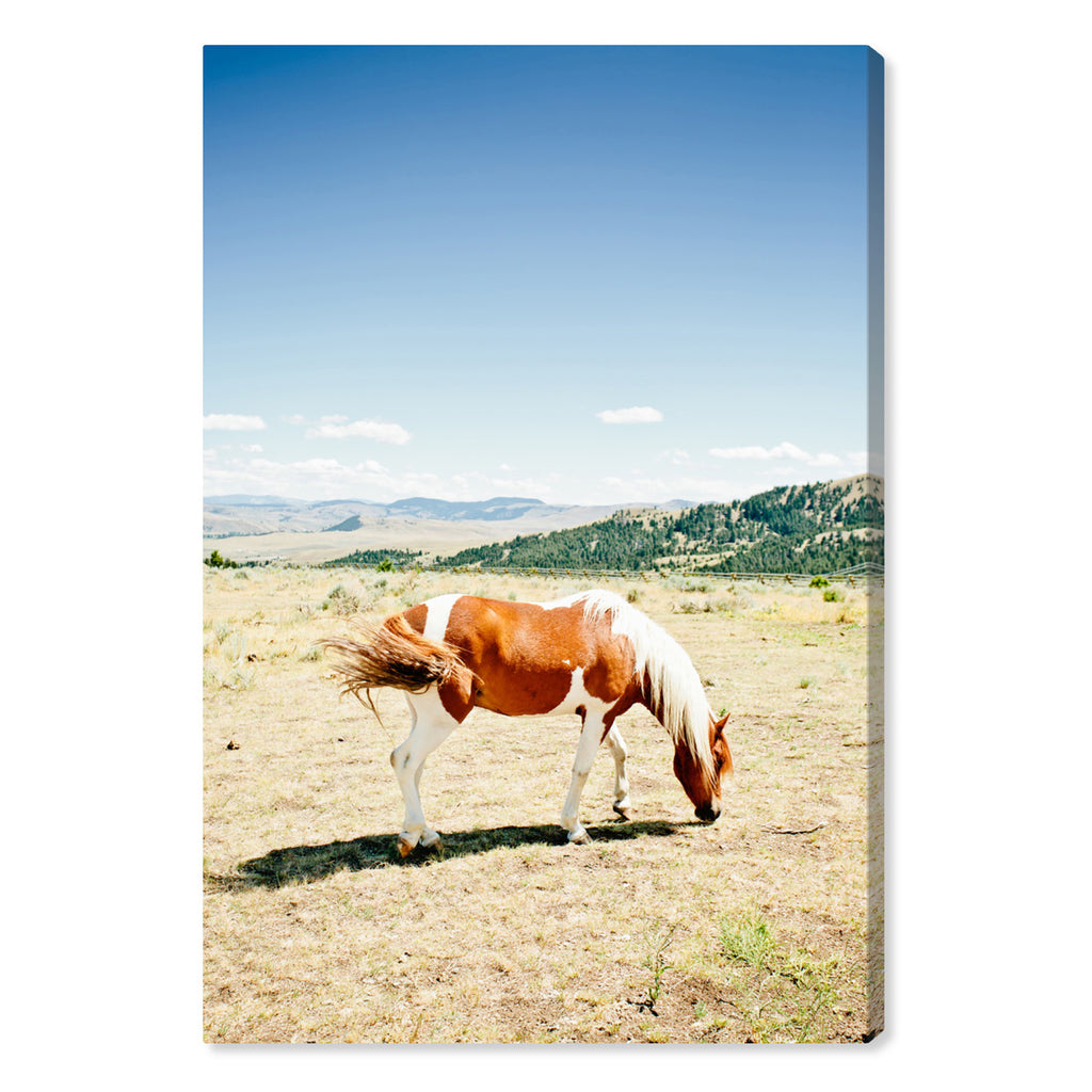 Oliver Gal Cassandra Eldridge Willow The Horse Canvas Wall Art