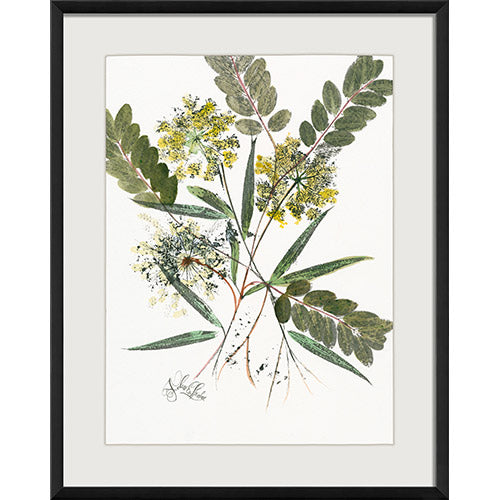 Honey of an Hour Framed Print