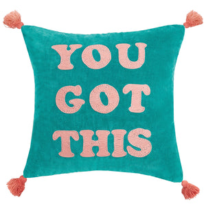 You Got This Embroidered Throw Pillow