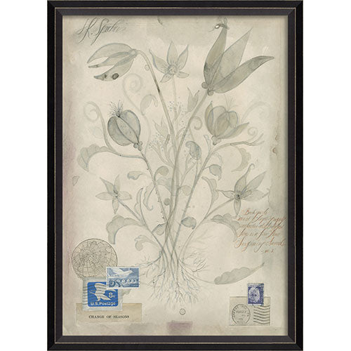 Flowers Change of Seasons Framed Print