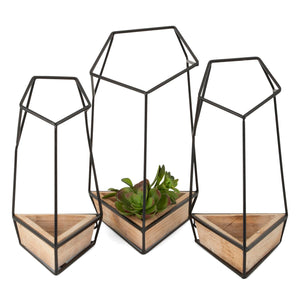 Zelzah Wall Planter Set of 3