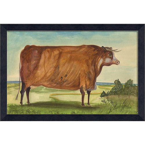 Bull Sconset by the Sea Framed Print