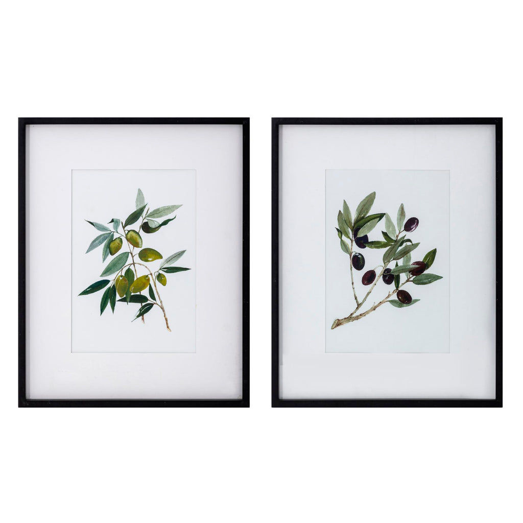 Olive Branch Framed Wall Art Set of 2
