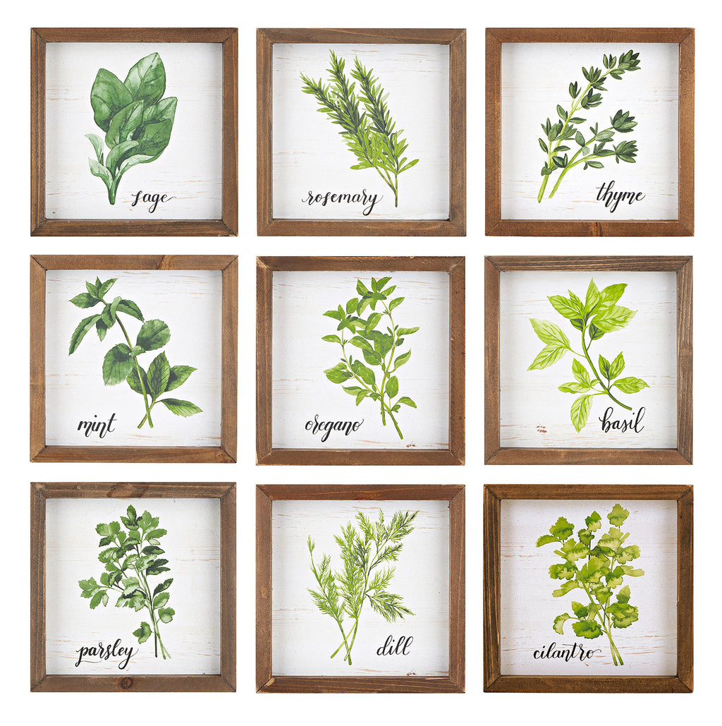 Herbs Framed Art Set of 9