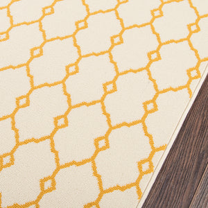 Capri Lattice Indoor/Outdoor Rug