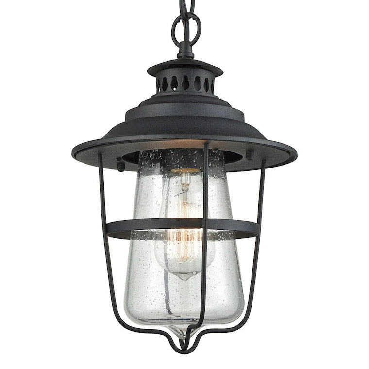 Braswell Outdoor Pendant