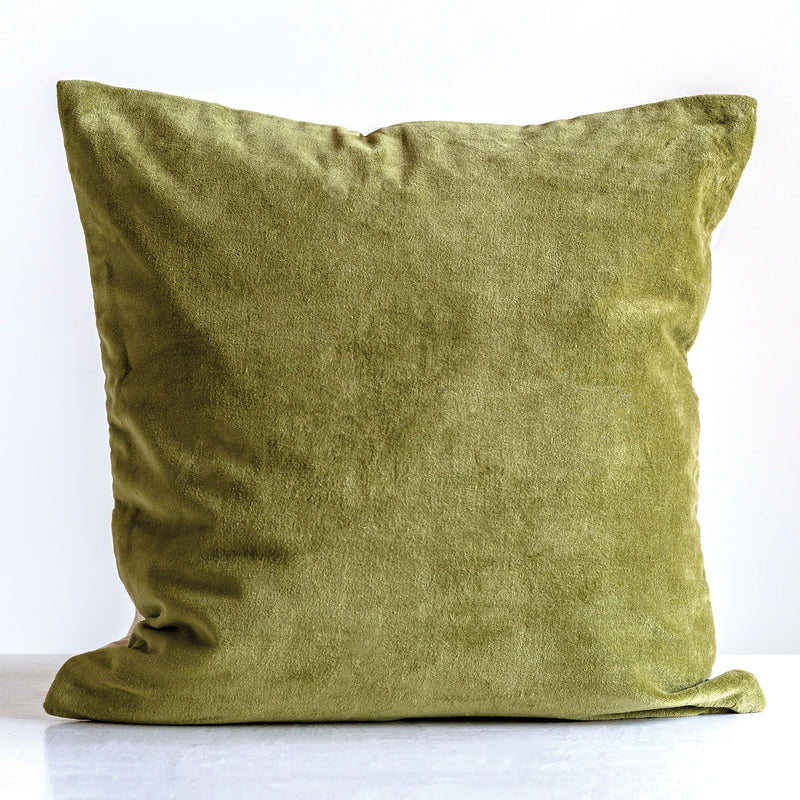 Roy Velvet Throw Pillow