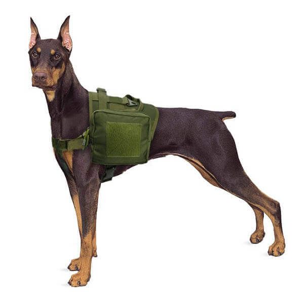 Titan Depot Dog Tactical Training Harness With Detachable Molle Pouch dobermann