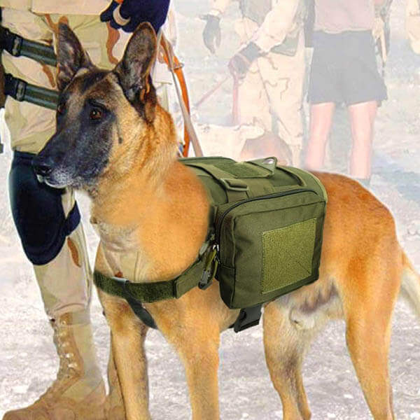 Titan Depot Dog Tactical Training Harness With Detachable Molle Pouch dog working 2