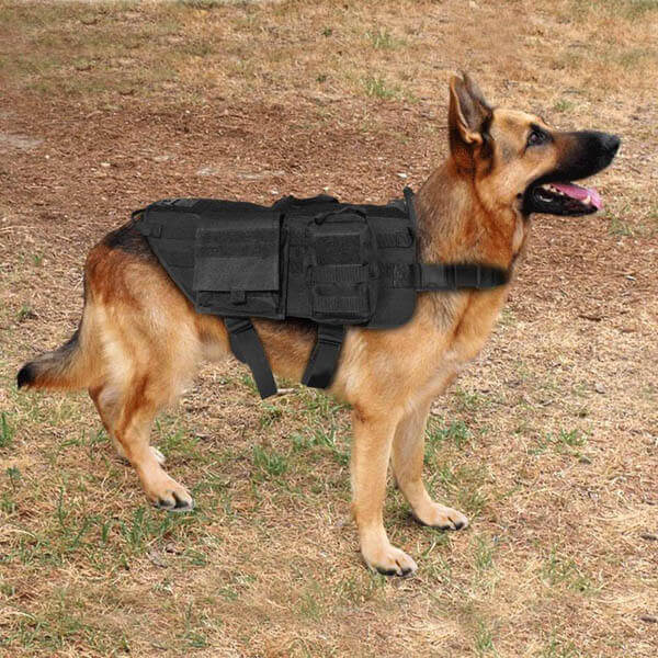 Titan Depot Tactical Dog Training Molle Vest Harness life pic