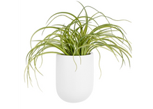 Load image into Gallery viewer, White wall vase planter