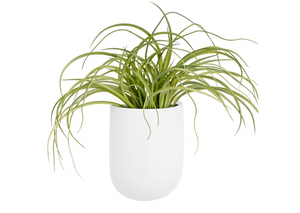 White wall vase planter