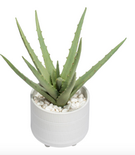 Load image into Gallery viewer, Faux Aloe succulent plant