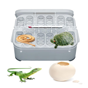 12-Compartment Professional Reptile Hatchery Box
