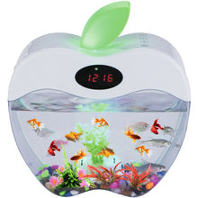 Load image into Gallery viewer, Mini Aquarium with LED night Light and Clock