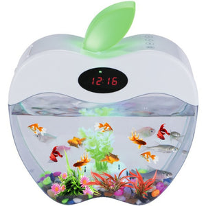 Mini Aquarium with LED night Light and Clock