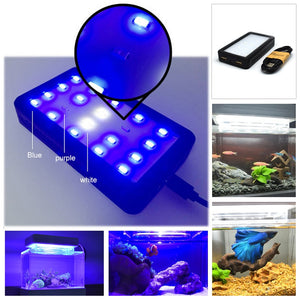 Blue LED Light for Fish Tank