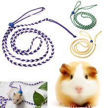 Load image into Gallery viewer, Rat, Mouse ,Hamster, Gerbil harness & lead