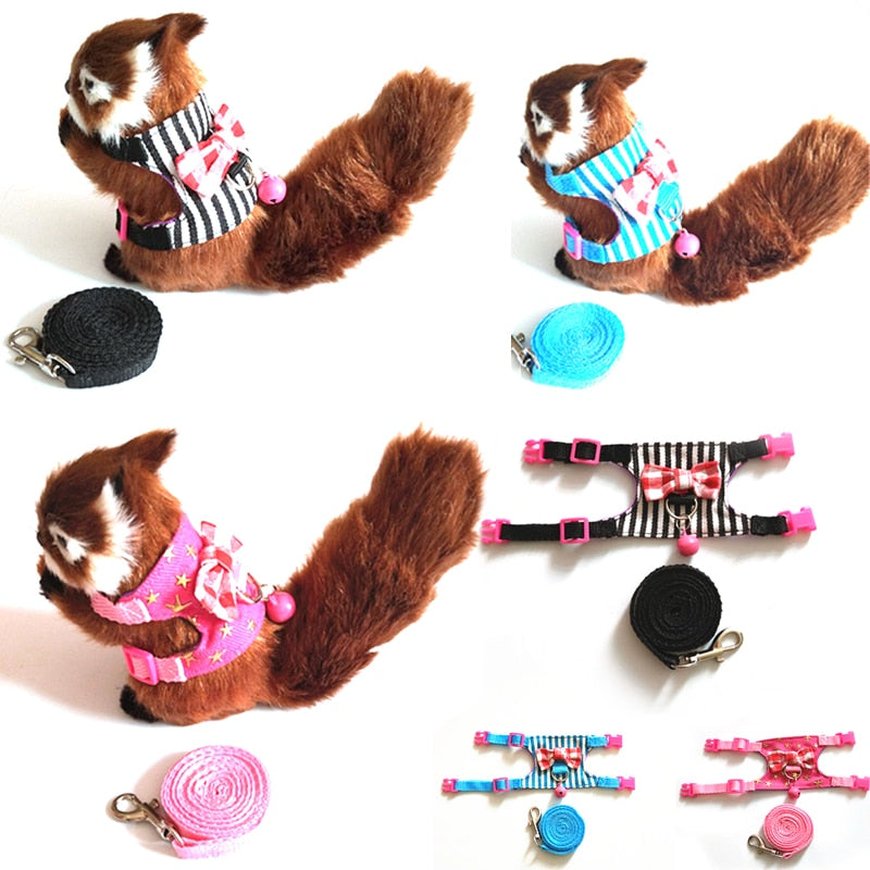 Small Pet Harness Bowknot Chest Strap Harness And Leash