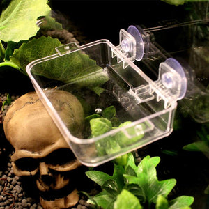 Acrylic Reptile Feeding Box Anti Escape Insect Box
