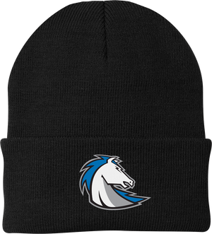 Clear Springs Lacrosse Knit Beanie
