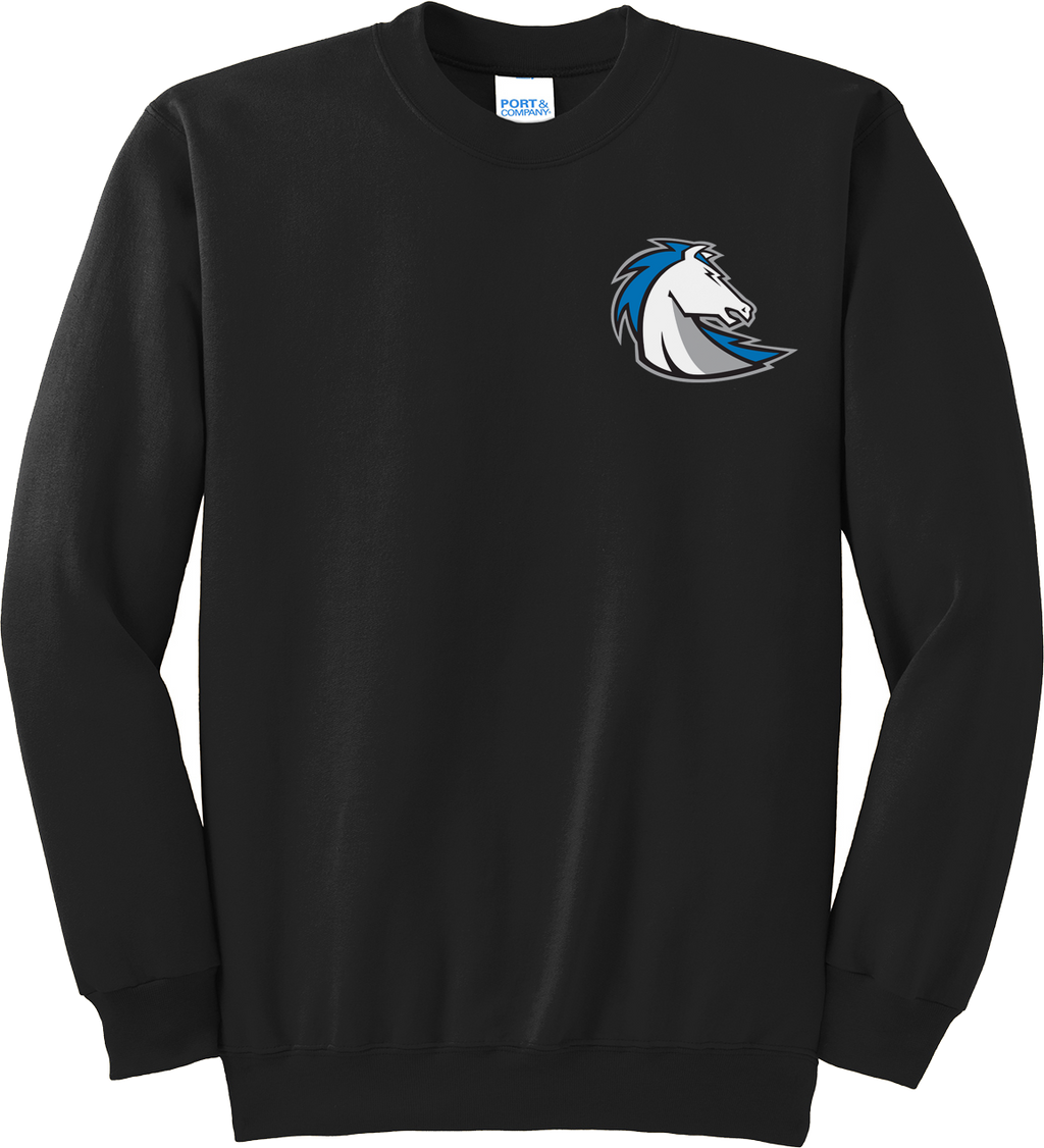 Clear Springs Lacrosse Crew Neck Sweatshirt