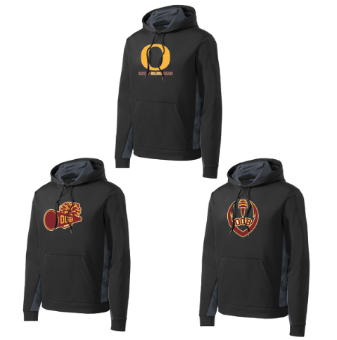 Oxford Golden Bears  Youth Fleece Color Block Hoodie