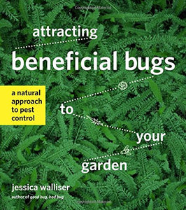 Attracting Beneficial Bugs to Your Garden: A Natural Approach to Pest Control - myorganicals