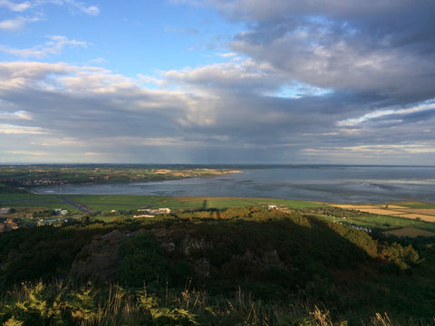 The views from Scrabo Tower, County Down