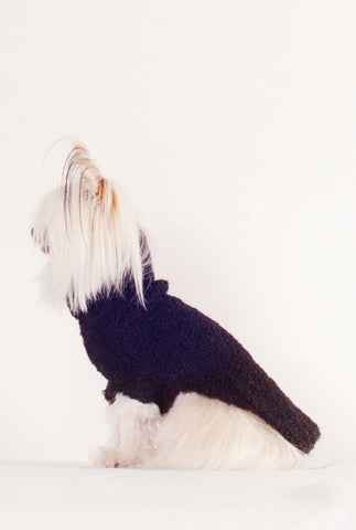 DOG SWEATER | noir
